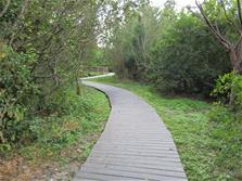 Photo of nature trail at Richardson Historic Park